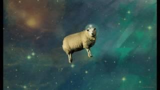 Space Sheep vs Say My Name (Wallace Mays Mashup)