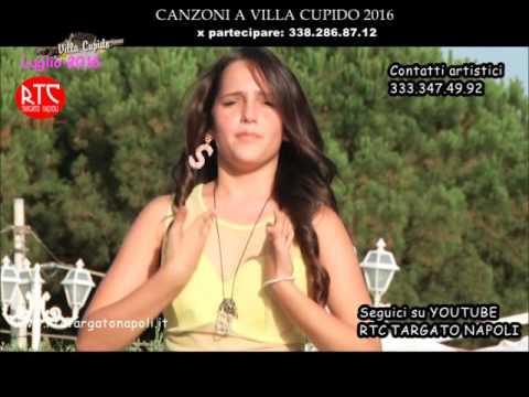 Sharon Caroccia -