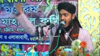 Amazing new bangla waz 1,Sayed Mokarram Bari, darbare baria sharif,01879381046