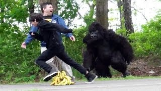 Classic Gorilla In Real LIfe Prank