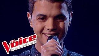 The Voice 2015 │Yann'Sine Jebli - Je vole (Michel Sardou)│Prime 1