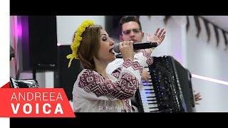 Andreea Voica - Seara Banateana la Ingolstatd 2017 - Partea 1 Live
