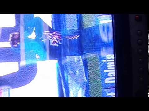 Xxx Mp4 Whi Indean Craket Plaer Dance 3gp Sex