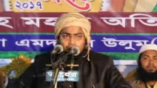 কোকিল কন্ঠি বক্তা মুফতি হাবিবুর রহমান মিছবাহ  Banglaz Waz 2017 Habibur Rahman Misbah