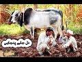 Download Video Download Kehri ghalti hoye hai zalim by Mansoor Malangi (New) Song 3GP MP4 FLV
