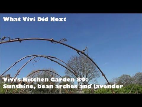 Xxx Mp4 Vivi S Kitchen Garden 89 Sunshine Bean Arches And Lavender 3gp Sex