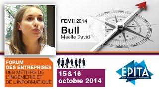 FEMII 2014 - Bull