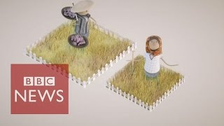 The women denied rights to own land  - BBC News