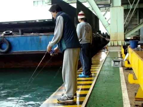 ตกปลาทูที่ญี่ปุ่น อิวากิเทค