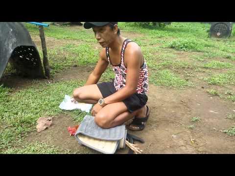Pagpupungos Using FAST HEAL Spray by Jap Gagalac
