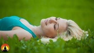 30 Minute Relaxing Sleep Music, Calm Music, Soft Music, Instrumental Music, Sleep Meditation, ✿3360D