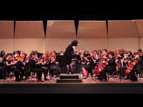 Lincoln Middle School - Concert Orchestra - Eleanor Rigby