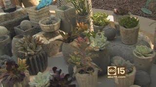 How to make faux concrete pots, planters