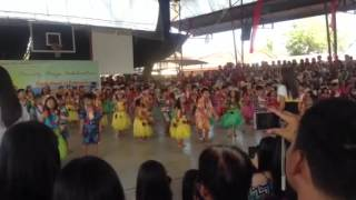 Hawaiian Dance performed by Grade 1 pupils w/ Jameelah Rae