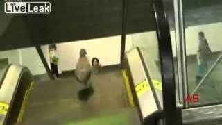 Bird goes wrong way on escalator