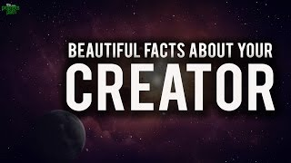 Beautiful Facts About Your Creator