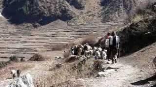 Wonderful India. Darma valley trek! Kumaun District. 2009