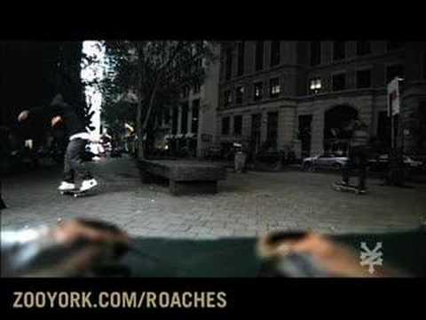 ZOO FREAK'N YORK - Zoo York Talking Roaches!
