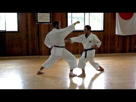 1-Step Sparring training