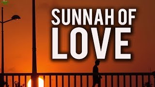 The Sunnah Of Love