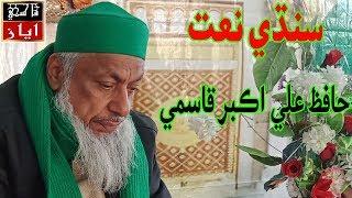 Hafiz Ali Akbar Qasmi sindhi naat | Bhej Mashorian Wara Sain