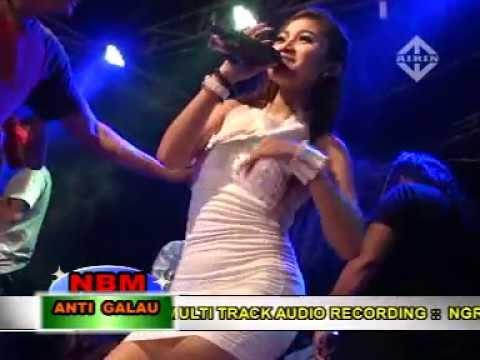 GEMULAI REZA LAWANG SEWU NBM ANTI GALAU Live Ngasem