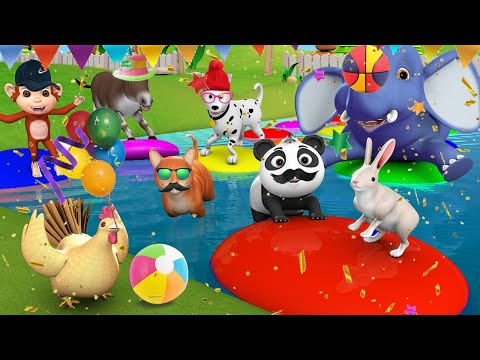 Animals Swimming Tournament in Forest Funny World Zoo Animals Fun & Comedy Activities in Jungle