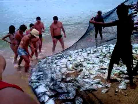 Puxada de Rede na Praia de Itapoã Vila Velha ES 08 01 2012