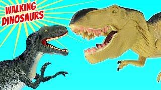 Dinosaur Walking Velociraptor Tyrannosaurus Rex - Dinosaurs Toy Collection For Kids