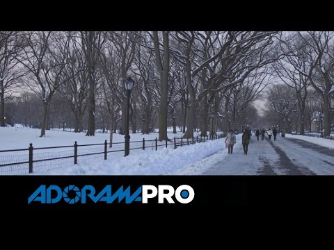 CANON C100 Mark II - Test Footage + Overview