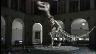 T-Rex Super Bowl XXX Spot