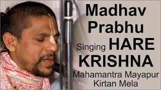 Madhav Prabhu Singing Hare Krishna Mahamantra Mayapur Kirtan Mela 2015 Day 4