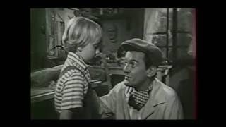 Ces Sacrées Vacances. Robert Vernay. Albert Bauer. 1956. Comédie. Tout Public