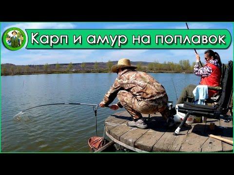 секреты весенней рыбалки на карпа