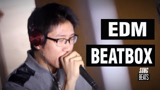 Electro & House EDM (Beatbox Live Looping) by SungBeats