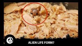 Tiny Alien Creature Found in Tuna Can?
