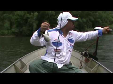 Robalos na Artificial Fishing Snook Pesca Esportiva
