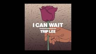 Trip Lee - I Can Wait