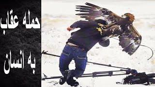 حمله عقاب به انسان