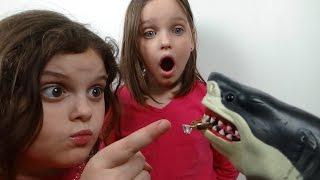 "Pet Shark Throws Up Diamond Ring ""Toy Freaks Style"" Gross"