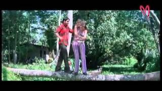 MaaMusic - Orey pandu: Raleva raleva okasari