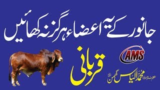 Not to Eat Parts of Qurbani | جانور کے مکروہ اعضاء