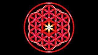 396 Hz ❯ LET GO of FEAR ❯ Cleanse DESTRUCTIVE ENERGY ❯ Solfeggio Sleep Music ❯ FLOWER of LIFE Series