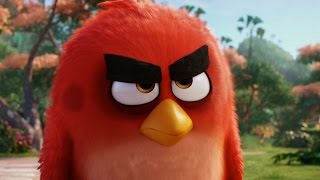 The Angry Birds Movie | International Official Trailer | In Cinemas NOW