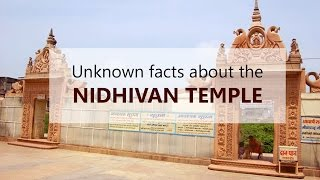 Spirituality - Unknown facts about the Nidhivan temple