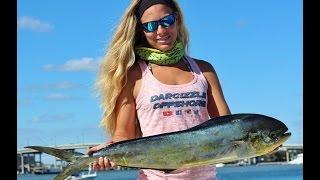 Florida Mahi, Big Jack & Girl Cleans a Fish Video