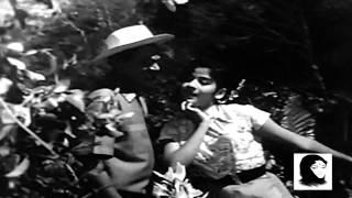 12 O'Clock - Dekh Idhar Ae Haseena - Geeta Dutt & Mohd.Rafi