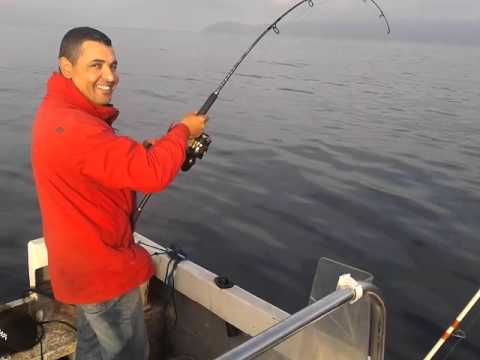 un gros poisson pêché au large d'Oran