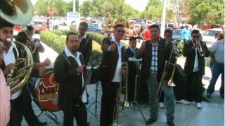 Tradicional Banda Potro 2