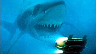 Search megalodon movie - GenYoutube